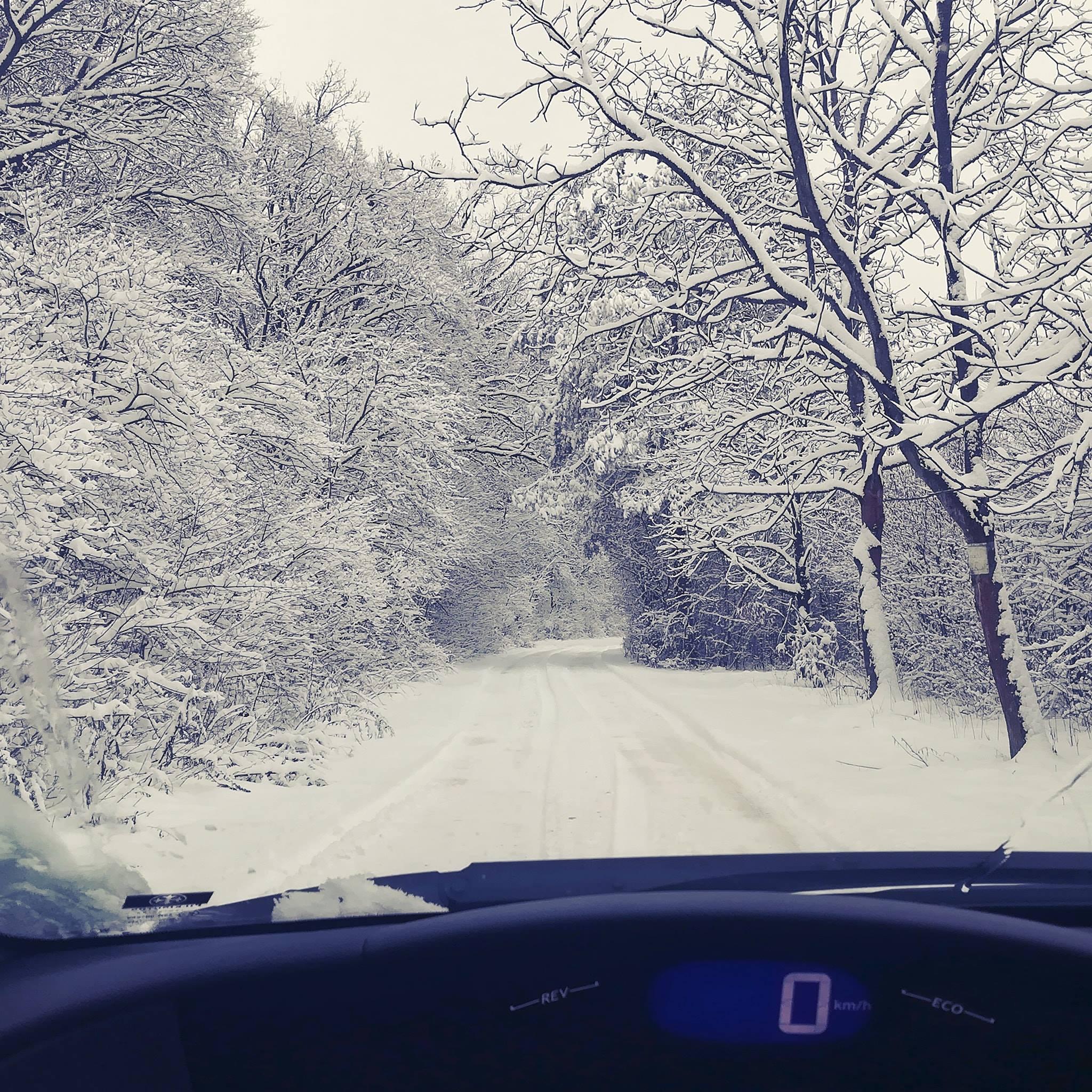 Téli szünet | Orienta.hu
